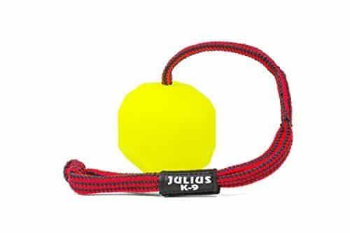 Gioco Julius-K9 Palla Con Corda