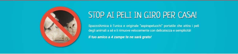 Spazzolamica1